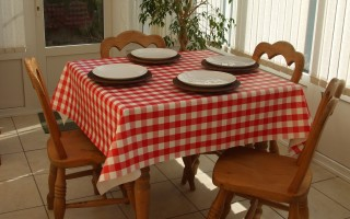 RED GINGHAM SQUARE