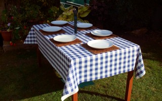BLUE GINGHAM RECTANGLE WITH PARASOL HOLE