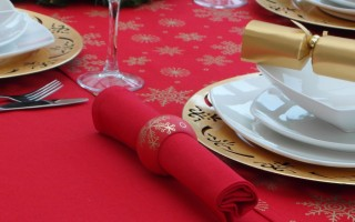 COTTON COLLECTION RED NAPKIN