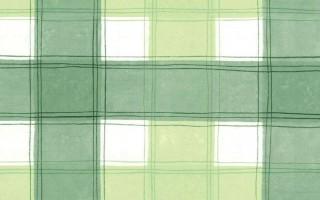 GREEN & WHITE CHECK