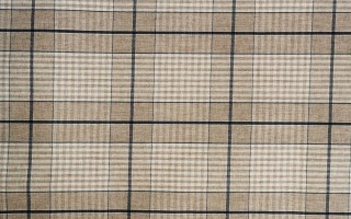ACRYLIC COATED BLUE CHECK TABLECLOTH